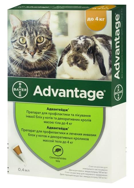 Капли от блох Адвантейдж Advantage Bayer для кошек и кролей до 4 кг 1 пипетка