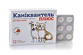 Таблетки от глистов антигельминтик Каниквантель плюс Haupt Pharma для собак и кошек 12 таблеток