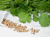 Кориандр в зернах, 100 гр