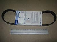 Ремінь 6К-742 поліклиновий генератора ВАЗ 211802115 8 клап. BP638 (FINWHALE). 2110-3701720