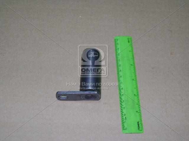 Ось колодок тормозных КАМАЗ (эксцентрик) с фиксатором в сб. (КамАЗ). 6520-3501153