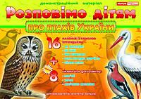 Розповімо дітям про птахів України 24 двостор.(картки+опис)