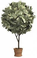 Делаем денежное дерево!