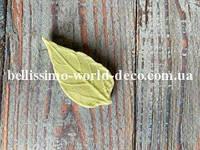 Молд лист Подсолнуха реалистичный, 4,2смх2см