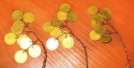веточки денежного дерева с монетками