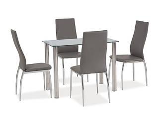Стеклянный стол Ted 100x60
