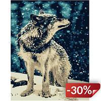 Картина Brushme по номерам Одинокий волк 40 x 50 cм (def.GX7483)