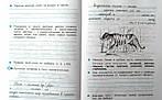 Русский язык 3кл [Тетрадь для упражнений №2] ФГОС, фото 3