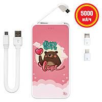 Дополнительный универсальный аккумулятор All You Need Is Love, 5000 мАч (E505-54), фото 1