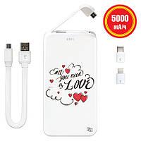 Портативная мобильная батарея Love Is All Around, 5000 мАч (E505-57), фото 1