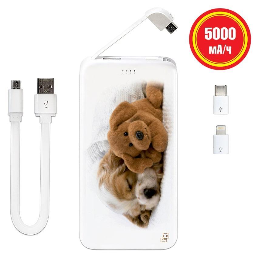 Портативное зарядное устройство Милые Собачки, 5000 мАч (E505-69)