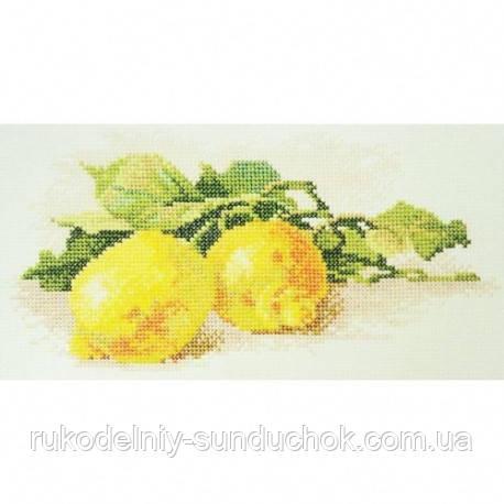 Набор для вышивания крестом ТМ Марья Искусница 04.009.06 Ветка с лимонами