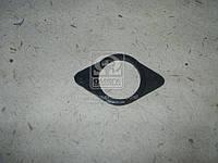 Ущільнювач зливу масла КАМАЗ 7511. 238Д-1003215-Б