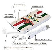 Универсальная мобильная батарея Мексиканец, 10000 мАч (E510-08), фото 4