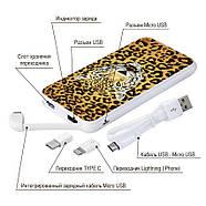 Портативное зарядное устройство Леопард, 10000 мАч (E510-19), фото 4