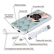 Дополнительный аккумулятор Злой Мопс, 10000 мАч (E510-27), фото 4