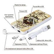 Портативный аккумулятор Пираты, 10000 мАч (E510-28), фото 4