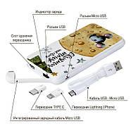Дополнительный мобильный аккумулятор Новогодний сыр, 10000 мАч (E510-45), фото 4
