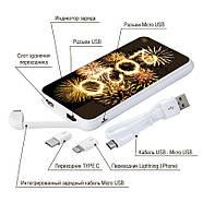 Новогодняя универсальная мобильная батарея 2020, 10000 мАч (E510-46), фото 4