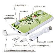 Мобильный аккумулятор Пасхальный Барашек, 10000 мАч (E510-66), фото 4