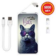 УМБ (повербанк) Коты Управляют Миром, 5000 мАч (E505-67), фото 2