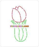 Трафарет + формочка-вырубка для пряников Тюльпан 7