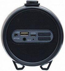 Колонка с Bluetooth Cigii S33D FM,USB, AUX, TWS Battery 1500 mAh мощность 8W, фото 3