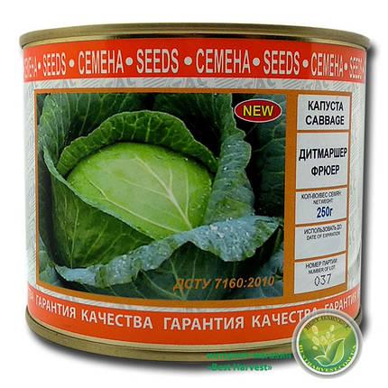 Семена капусты «Дитмаршер Фрюер» 250г (Vitas), фото 2