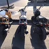 Скутер Honda Zoomer, фото 10