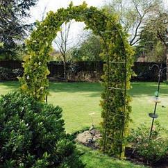 Садовая пергола (арка)Greenmill GR4313 240 см