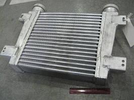 Охладитель наддувочного воздуха ГАЗ, ПАЗ Д245.7.9 (Беларусь). 250-1172010