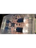 Инкубатор для яиц Курочка Ряба 56, в пластиковом корпусе, вентилятор, 4 лампы, с регулятором влажности, фото 4