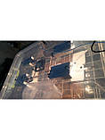 Инкубатор для яиц Курочка Ряба 56, в пластиковом корпусе, вентилятор, 4 лампы, с регулятором влажности, фото 6
