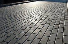 "Тротуарная плитка ""Кирпич"" 200х100 высота 60 мм колор-микс, фото 2"