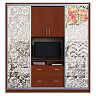 Шкаф купе ТВ 4 2100х450х2400 Алекса мебель, фото 3