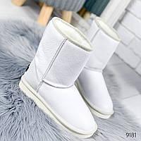 Угги женские White Белые 9181, фото 1