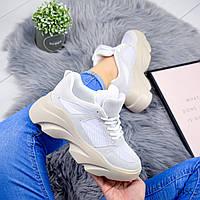 Кросівки жіночі Bang сірий + білий 7455