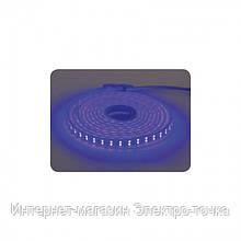 Лента светодиодная 28х35 COLORADO  влагозащищенная IP65 144led/m 8W/m синий