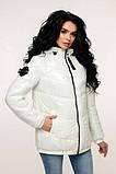Куртка стеганая демисезонная, выполнена из плащевой ткани Размер: 44,46,48,50,52, фото 9