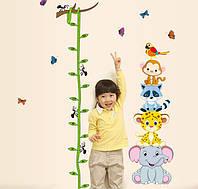 Детская наклейка ростомер Зоопарк - наклейка на стену ростомер для ребенка