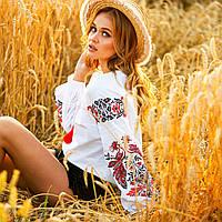 Сорочка вишиванка жіноча Жарптиця з червоною вишивкою