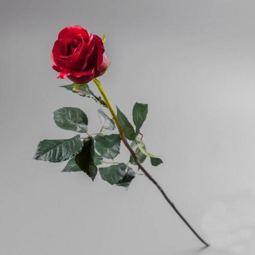 """Роза """"красная"""" искусственная 77 см, силикон"""
