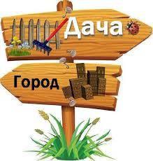 Дача,сад,город