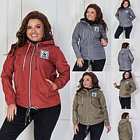 Женская стильная куртка на молнии №3166 (р.48-62) в расцветках