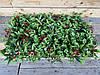 Коврик на могилу 60х40, искусственная трава для могилы