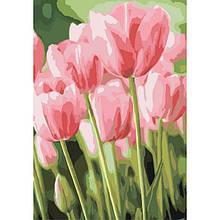 Картина по номерам Идейка - Весенние тюльпаны 35*50 см (КНО2069)