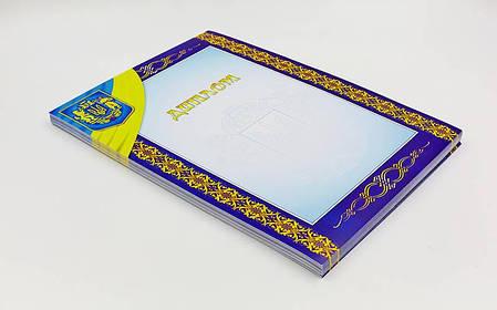 Диплом спортивный чистый С-1802-3 (бумага, формат A4, 21см х 29,5см, в уп.50шт, цена за 1шт) PZ-C-1802-3, фото 2