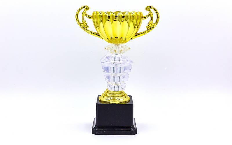 Кубок спортивный с ручками PREMIUM (пластик, h-26см, b-16см, d чаши-10см, золото) PZ-C-139A