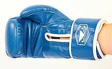 Перчатки боксерские кожаные на липучке BDB STRIKE (10-14oz) Красный 10 унции PZ-VL-6615_1, фото 3