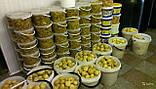 Ведро пищевое прозрачное с крышкой 10 л., фото 3